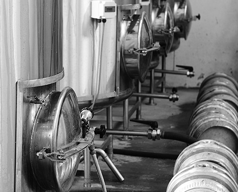 Photograph of casks lined up in front of our fermenters
